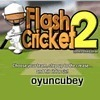 flash cricket