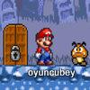 Süper Mario Yıldız Peşinde 3